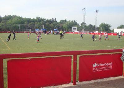 Campo central Ernesto Cotorruelo